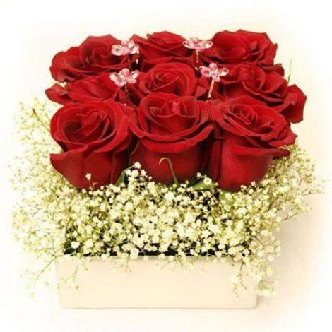 3×3-Roses-BiH