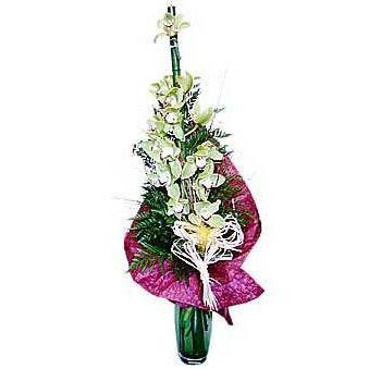 Buket-orhideja-HR